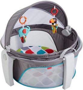FisherPrice Baby Dome
