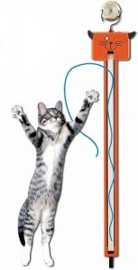 Moody Pet Fling AMA-String Cat Toy
