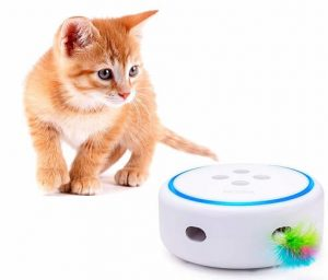 PETBIA Interactive Cat Toy