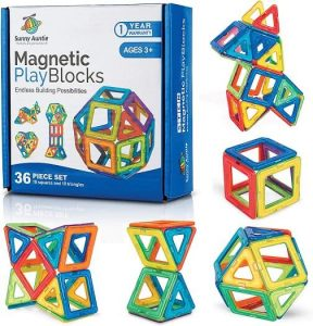 sunny auntie magnetic blocks
