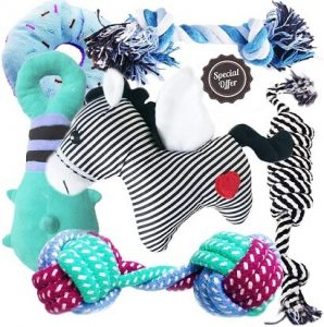 BUIBIIU puppy teeth toy