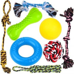Youngever Dog Chew Toys